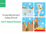 Video Từ vựng tiếng Anh lớp 8 - Unit 9: Natural Disasters - Học Hay
