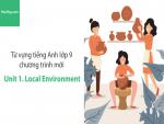 Video Từ vựng tiếng Anh lớp 9 - Unit 1: Local Environment - Học Hay