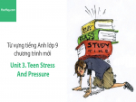 Video Từ vựng tiếng Anh lớp 9 - Unit 3: Teen Stress and Pressure - Học Hay
