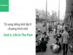 Video Từ vựng tiếng Anh lớp 9 - Unit 4: Life in the Past - Học Hay
