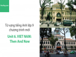 Video Từ vựng tiếng Anh lớp 9 - Unit 6: Vietnam: Then and Now - Học Hay