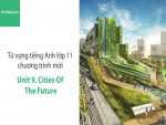 Video Từ vựng tiếng Anh lớp 11 - Unit 9: Cities of the Future - Học Hay