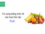 Từ vựng tiếng Anh về các loại trái cây - HocHay
