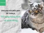 Từ vựng tiếng Anh về mùa đông - Topic tiếng Anh về mùa đông - Hochay