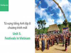 Video Từ vựng tiếng Anh lớp 8 - Unit 5: Festivals in Vietnam - Học Hay