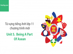 Video Từ vựng tiếng Anh lớp 11 - Unit 5: Being a Part of ASEAN - Học Hay