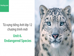 Video Từ vựng tiếng Anh lớp 12 - Unit 6: Endangered Species - Học Hay