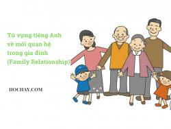 Từ vựng tiếng Anh về mối quan hệ gia đình (Family Relationship)