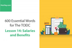 Sách 600 Từ vựng TOEIC – Lesson 14: Salaries and Benefits – Học Hay
