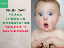 Thành ngữ ẩn dụ tiếng Anh mang nghĩa châm biếm (Funny Idioms for learners to laugh at) -HocHay