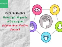 Thành ngữ tiếng Anh về 5 giác quan (Idioms about the Five Senses) - HocHay