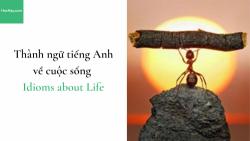 Thành ngữ tiếng Anh về cuộc sống (Idioms about Life)
