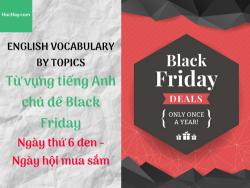 Từ vựng tiếng Anh chủ đề Black Friday - Ngày thứ Sáu Đen - Ngày hội mua sắm - Hochay
