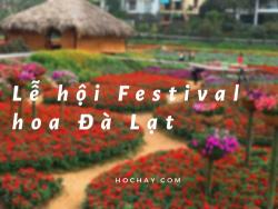 Từ vựng tiếng Anh chủ đề lễ hội Festival hoa Đà Lạt - HocHay