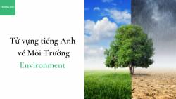 Từ vựng tiếng Anh chủ đề về Môi Trường (Environment) - HocHay