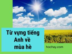 Từ vựng tiếng Anh về mùa hè - Topic tiếng Anh về mùa hè - HocHay