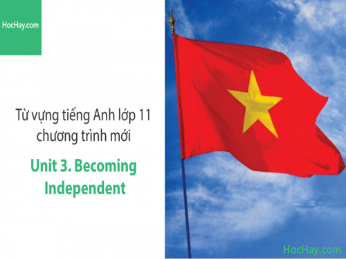 Video Từ vựng tiếng Anh lớp 11 - Unit 3: Becoming Independent - Học Hay