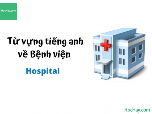 Từ vựng tiếng anh về Bệnh viện - HocHay