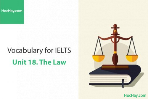 Từ vựng IELTS – Unit 18: The law – Học Hay