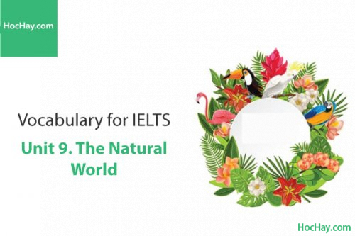 Từ vựng IELTS – Unit 9: The nature world – Học Hay